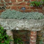Trough at Sissinghurst, England