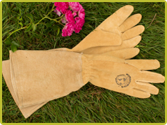 Womanswork Leather Rose Glove