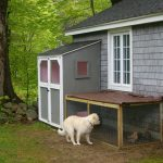 Chicken Coop with Daisy