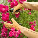 Womanswork Leather Rose Gauntlet Gloves