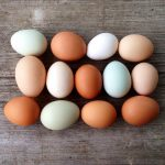 Eggs are like people - it's what's on the inside that matters.