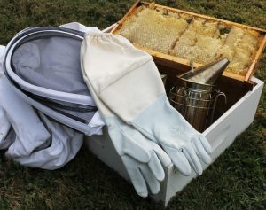 BeekeeperGloves